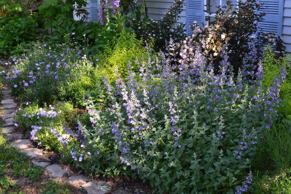 best-garden-ever